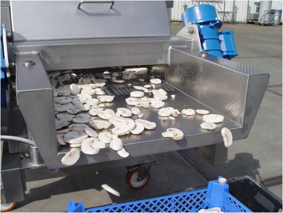 Eminceuse à sec de champignons